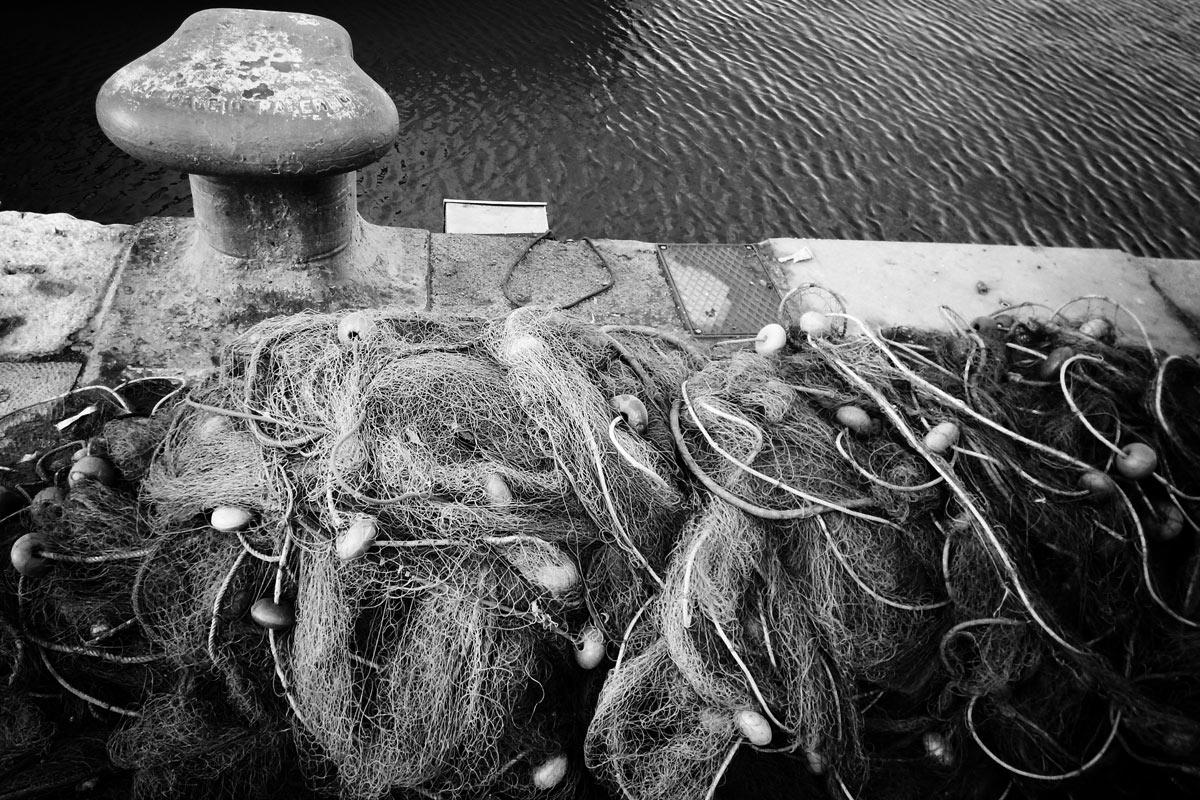 der fischfang ist eine der grundwirtschaften der weltweiten ernährung