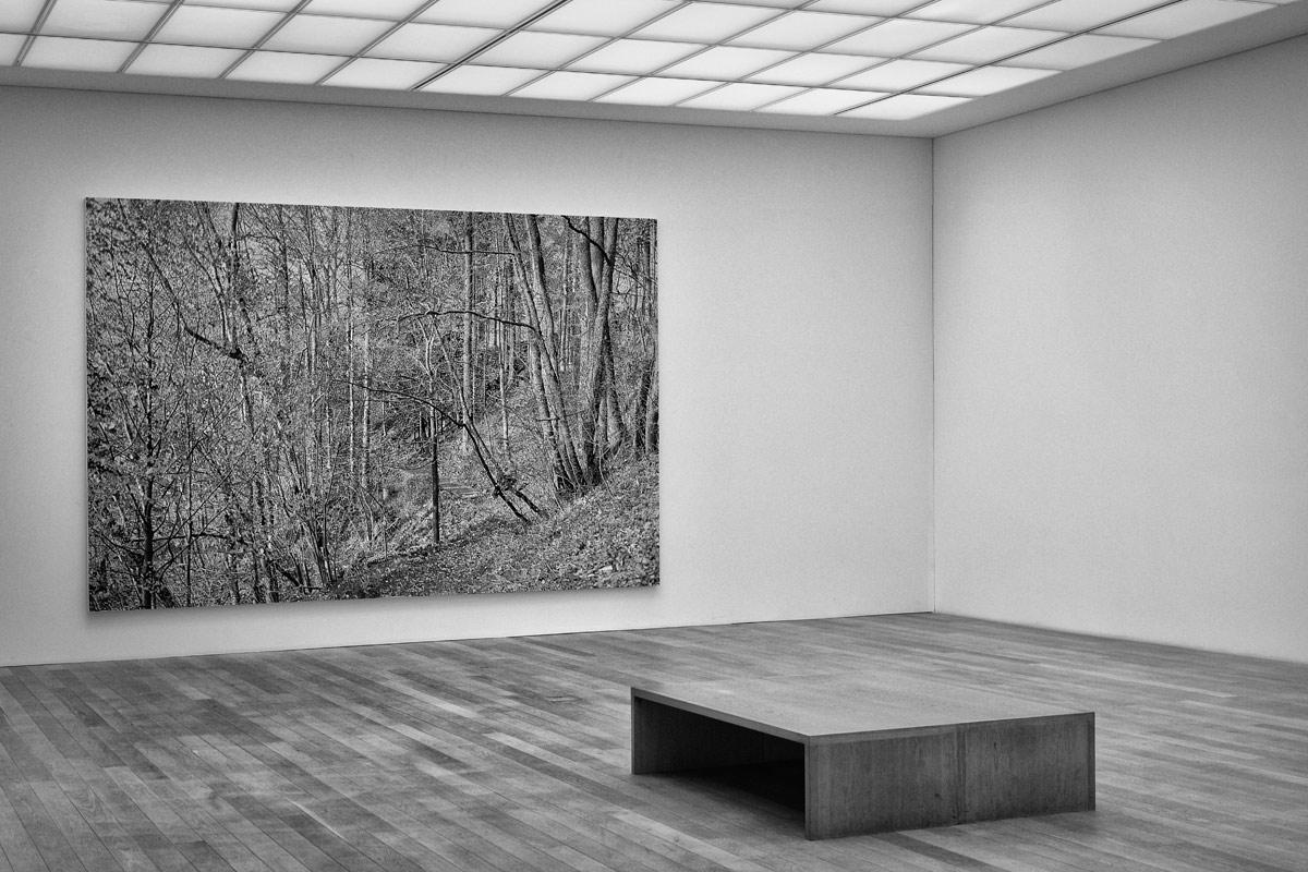 ausstellungsarchitektur, hier im museum franz gertsch in burgdorf