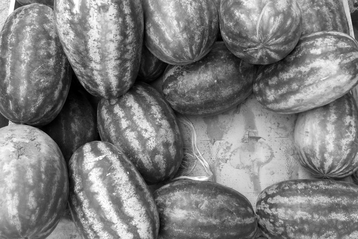 der handel mit melonen